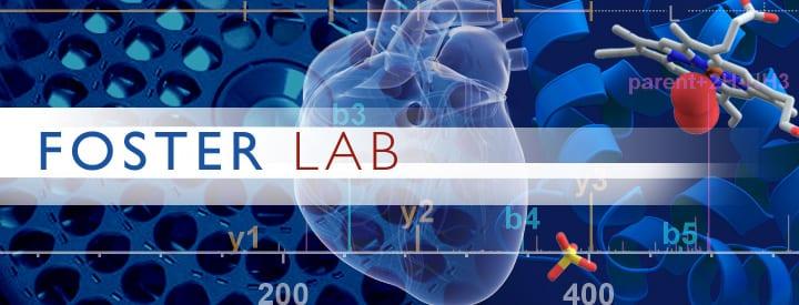 Foster Lab banner montage